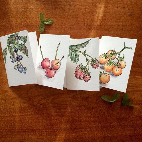 Summer Harvest Greeting Cards