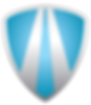detail cleaning logo