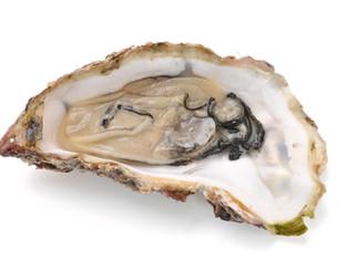 10月の旬のお魚は「牡蠣」