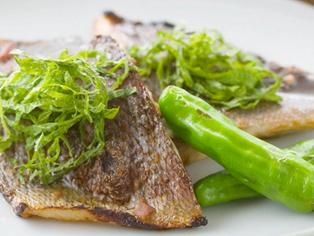6月の旬のお魚レシピ