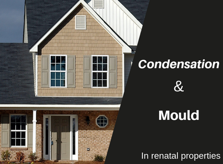 Condensation and Mould in Rental Properties