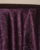 Plum Twinkle Tensil.jpeg