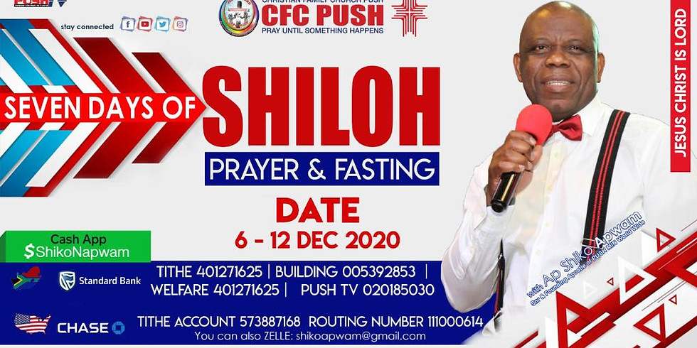 3 DAYS OF SHILOH