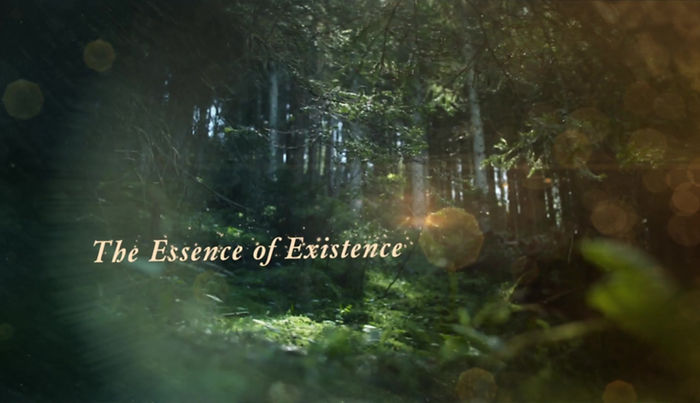 floresta goa