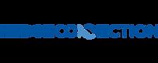 HedgeConnection Logo 2018.png