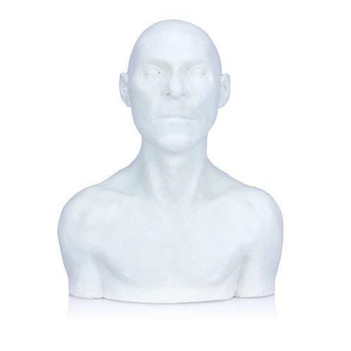 Male 1/4 Size Sculpting Maquette