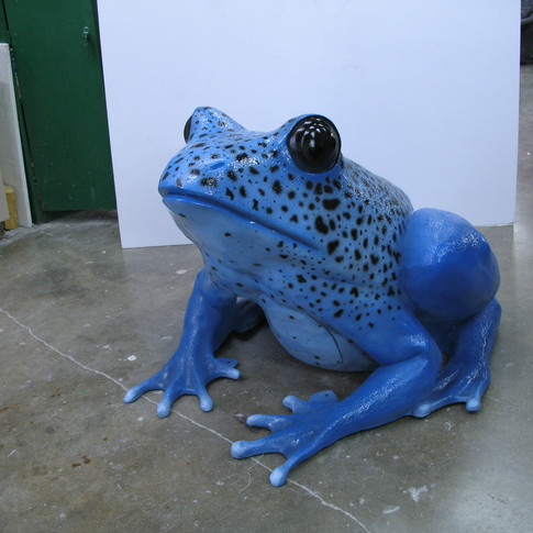 Final Poison Dart Frog 001.jpg