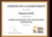 AVC Certificate.png