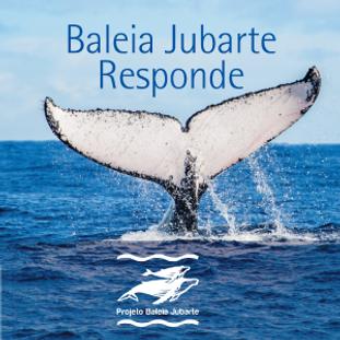 JubarteResponde_capa.png