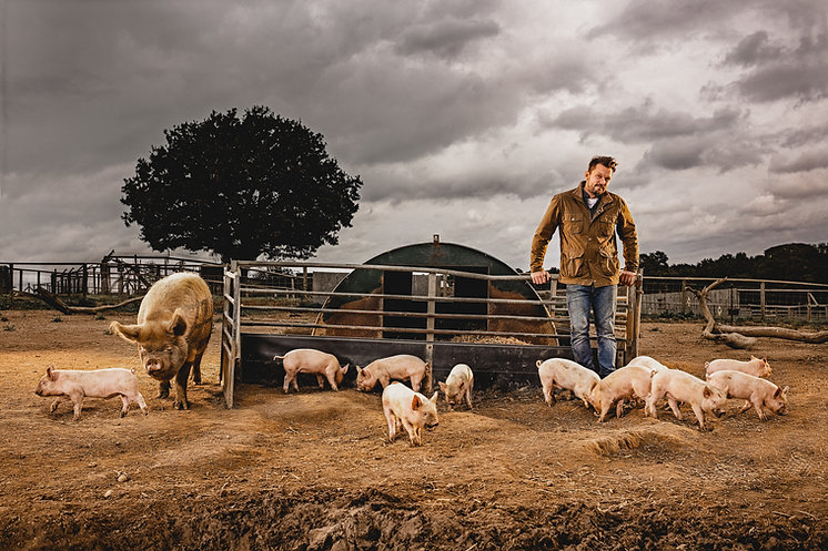 Jimmy with Pigs RT.jpg