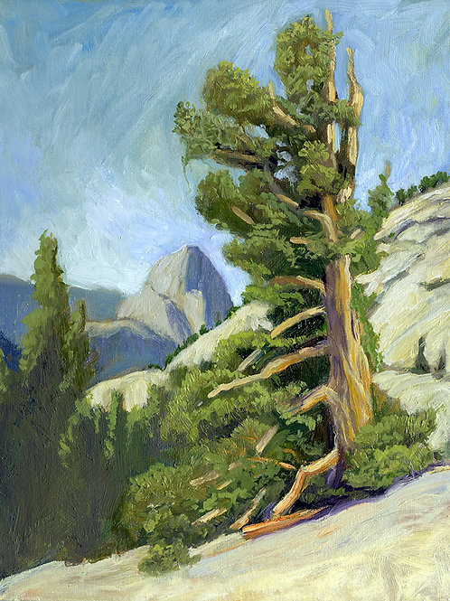 """""""Half Dome from Olmstead Point""""    11""""x14""""  Oil on board"""