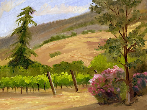 """Evening in the Vineyard No. 3""      10""x12""     oil on board"