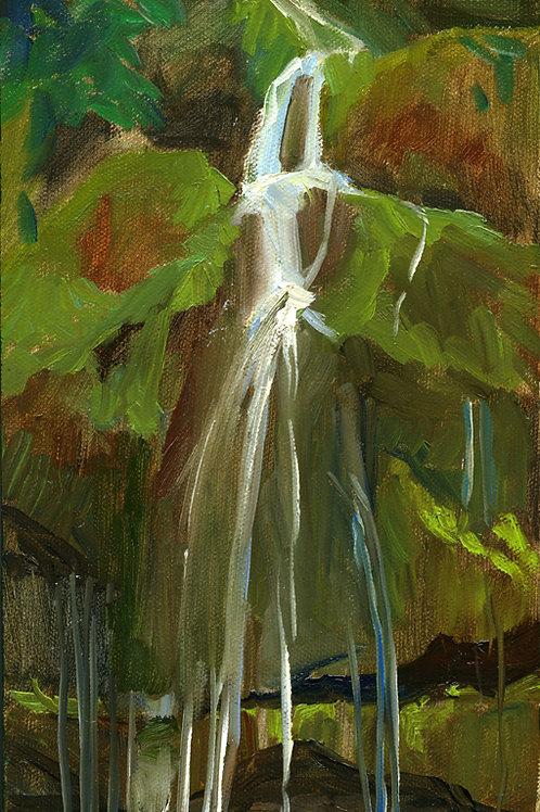 Novato Waterfall
