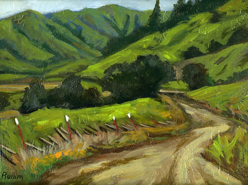 Marin Country Road