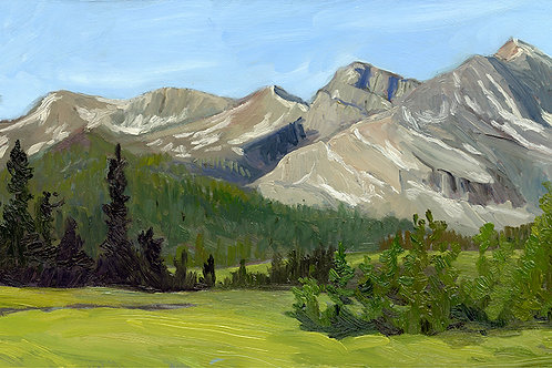 """Tioga Pass Panorama""     11.5""x27""    oil on board"