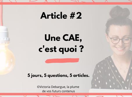 #2 : Une CAE, c'est quoi ?