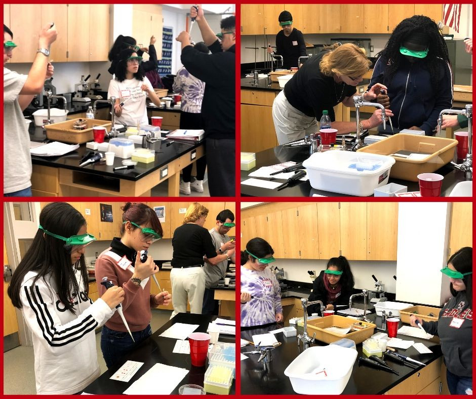 Four images of Southbridge High School students doing a DNA phosphoresis lab