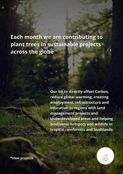 Sisu Carbon neutral poster