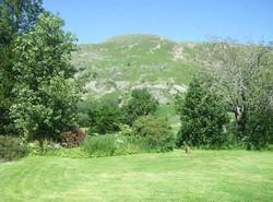 View from Back Garden.jpg