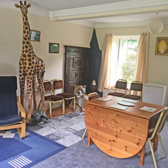 Chill-out + Dining Room (with animals!)