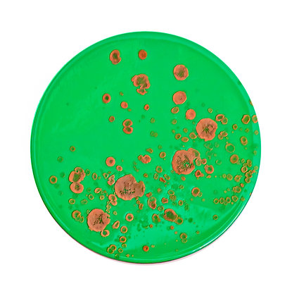 Abstract Series Circle