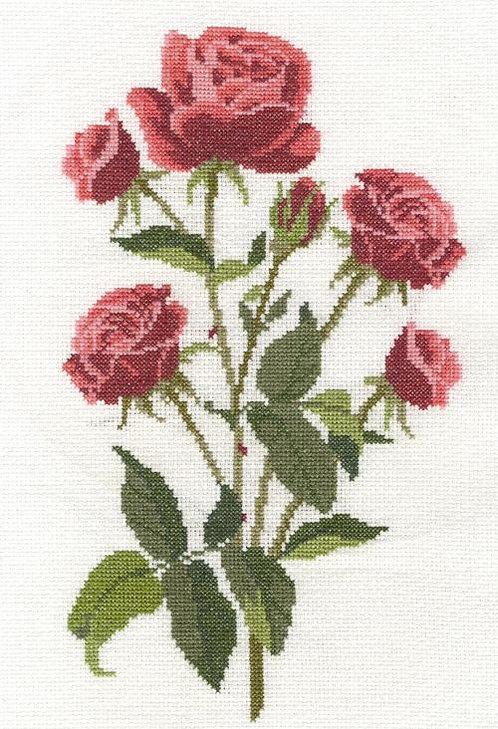 DMC Red Roses Cross Stitch Kit