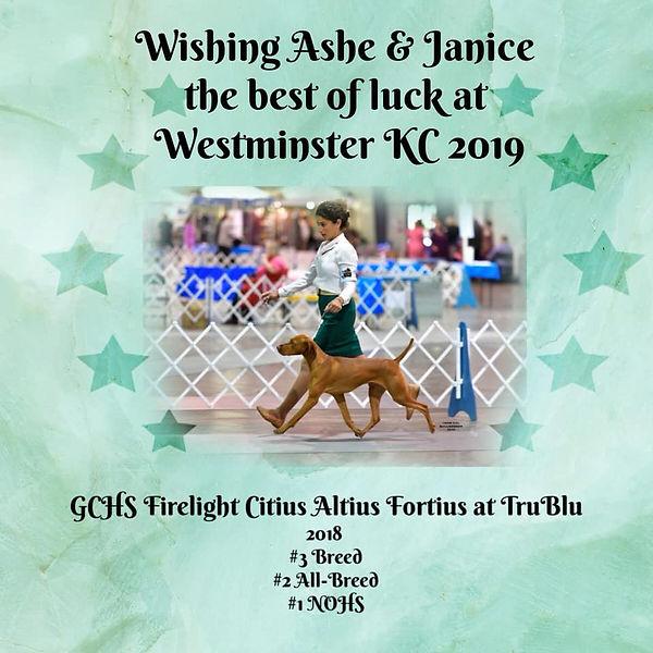 Ashe 2019 WKC ad.jpg