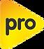 neuvo logo pro.png