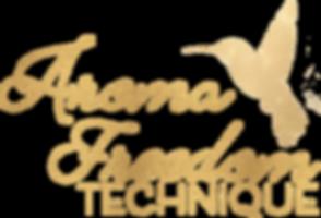 2018 CS AFT Promo Logo.png