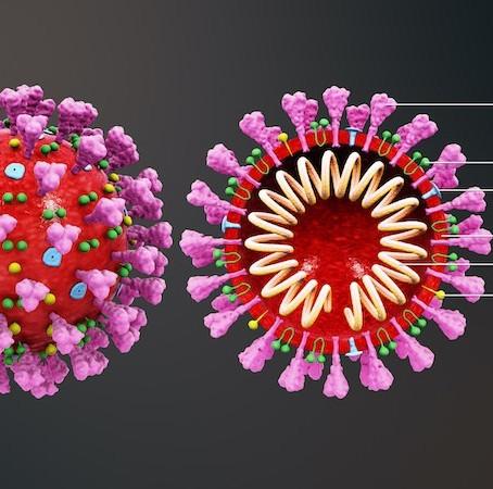 ทำความรู้จักกับ coronavirus สายพันธุ์ใหม่ ไวรัสนี้มีชื่อเฉพาะว่า 2019-nCoV ชื่อย่อในไทยคือ COVID-19