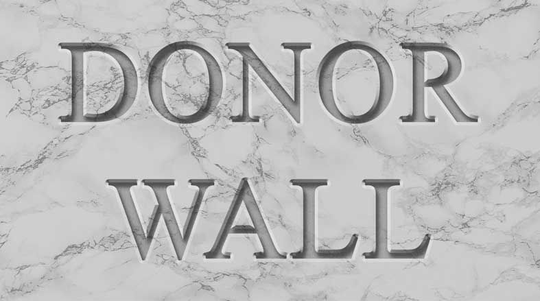 donor-wall-marble_Quantum Biology.jpeg
