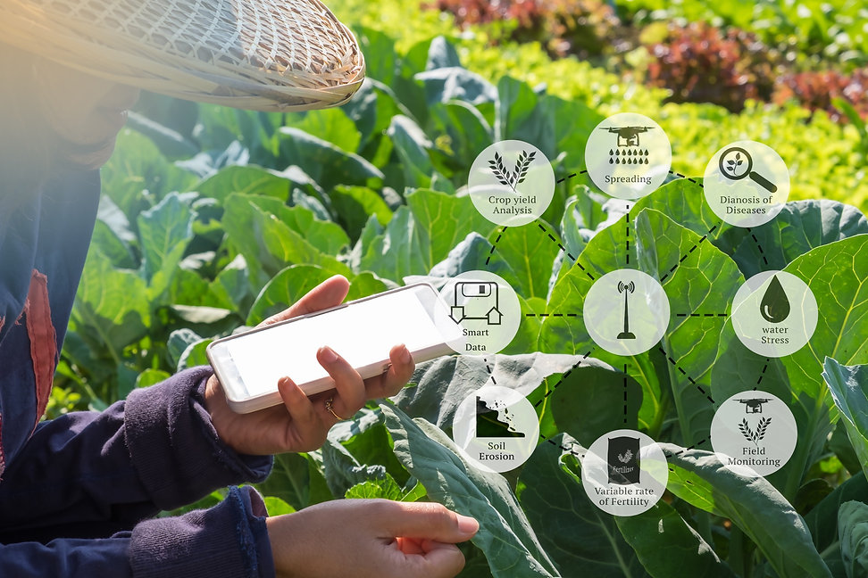 Smart Agri pic1.jpg