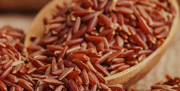Thai Organic Red Rice (FOB THB/MT)