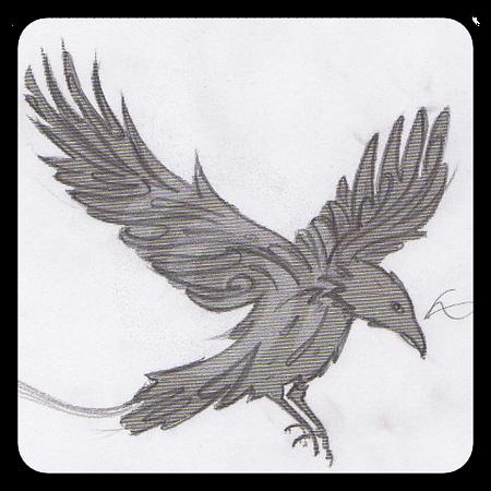 raven sketch web.png