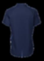Silverback Falcon stock Polo