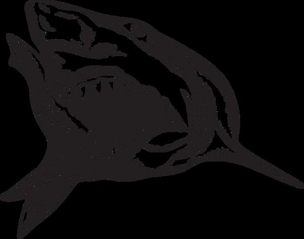 silverback-shark_edited.png