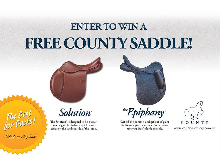 Saddle Comp Website To Size v4 edit smal