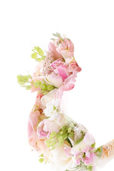 Shivan flower profile.jpg