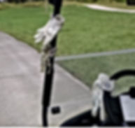 Golf gloves on cart.jpg