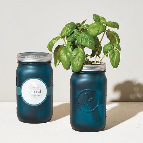 Basil (Blue) - Hydroponic Garden Jar