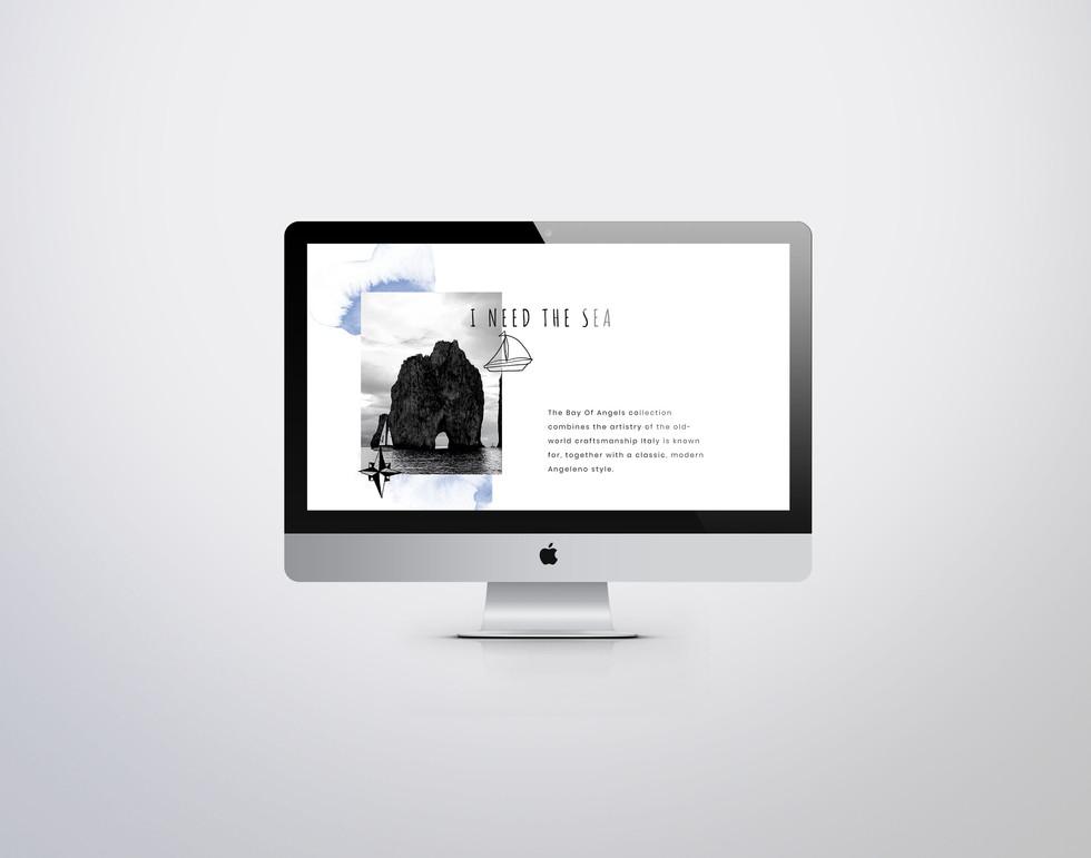 BOA Website 2.jpg