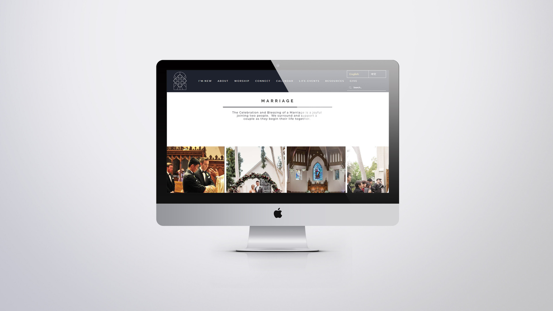 COS Website 8.jpg