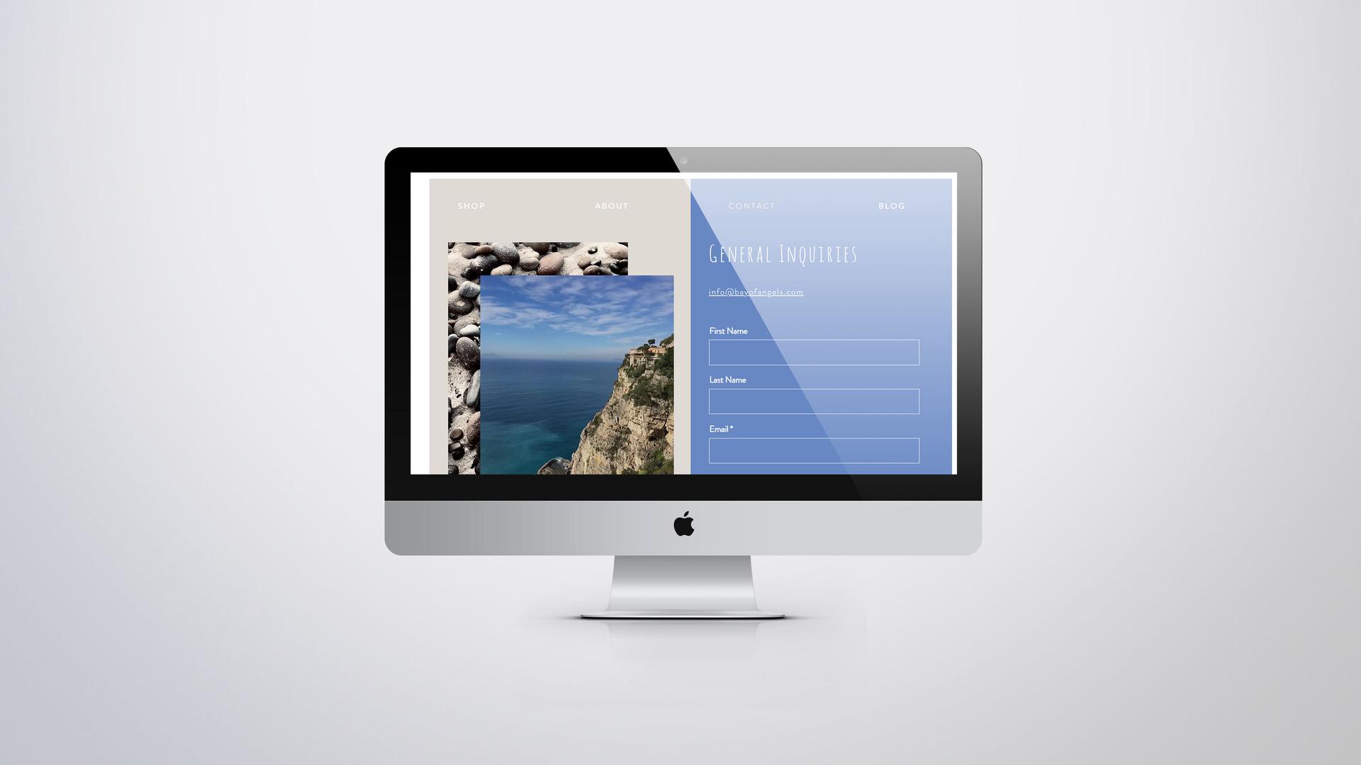 BOA Website 5.jpg