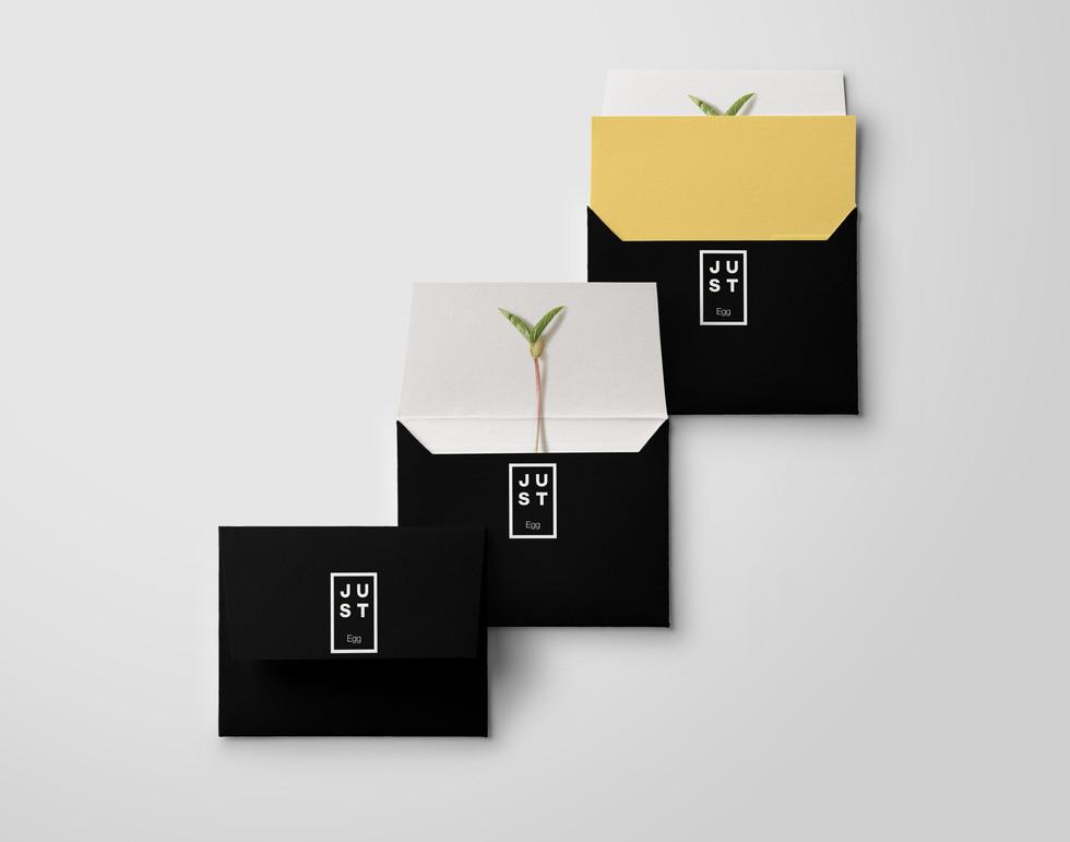 Just Envelope Mock Up_1.jpg