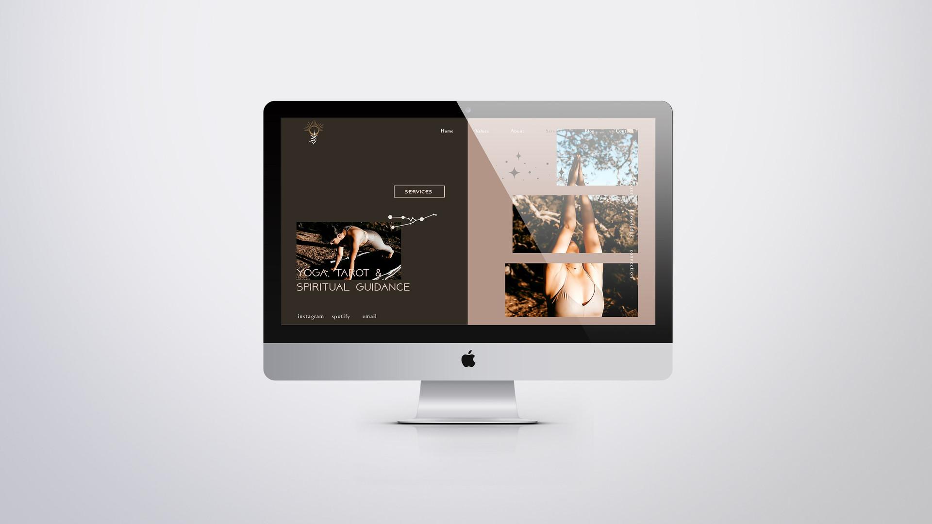 BB Website 4.jpg