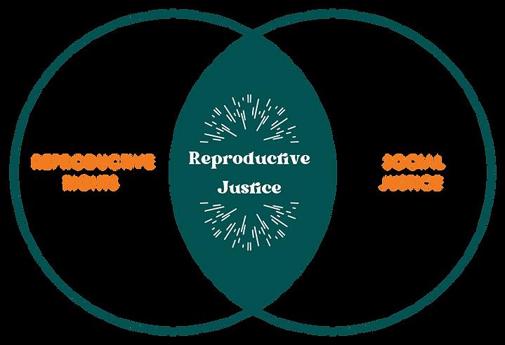 reproductive justice diagram-01.png