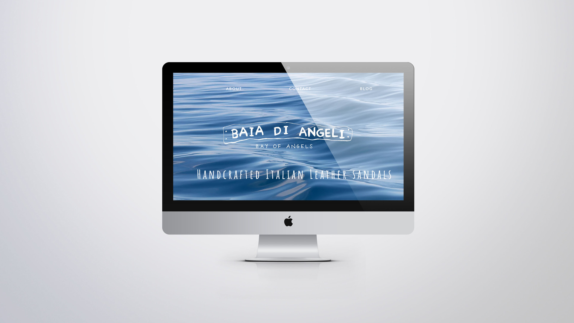 BOA Website 1.jpg