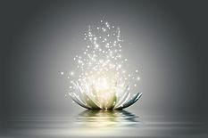 vajra_light_lotus_centered.jpg