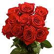a rose.jpg