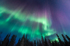 Experiencing Pure Magic : The Northern Lights